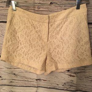 Lace Shorts! Ivory. Size: 8P (petite)